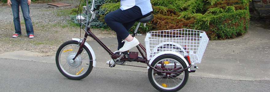 Tricycle pour adulte