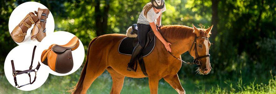 Trouver un spécialiste de la vente de matériel d'équitation et d'équipement pour chevaux